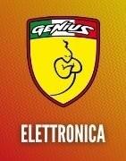 Electronics for RC cars - Genius Racing
